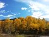 14-Bear-Lake-Fall