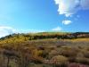 15-Logan-Canyon-Fall