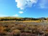 16-Logan-Canyon-Fall