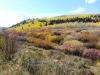 17-Bear-Lake-Fall